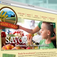 Fields Of Gold Website Design