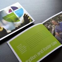 LFSVA Flagship Brochure