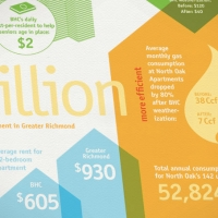 Bhc2012 Infographic Detail